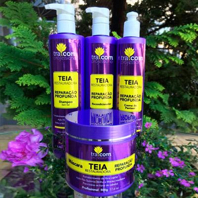 Kit Linha Teia Restauradora | Segredos Hair Cosméticos